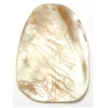 River Shell With Carving Style #G